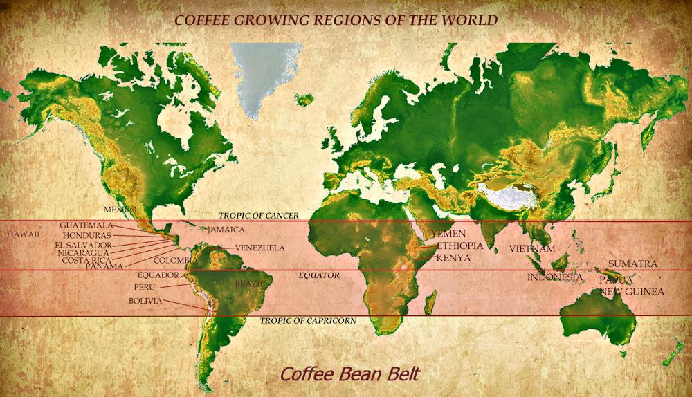 coffeebelt